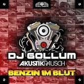 DJ Gollum feat. Akustikrausch