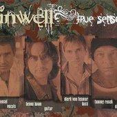 Sinwell