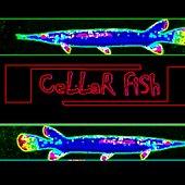 Cellar Fish