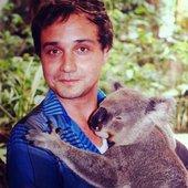 Daniel <3 Koalas