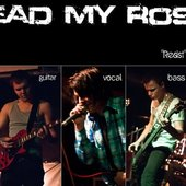 Dead My Rose