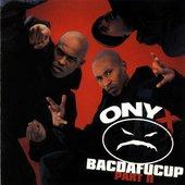 What's Onyx