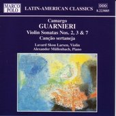 Violin Sonata No. 3: Terno