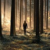 HDforest