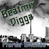 Beatmix Digga