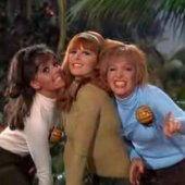 The TV Honeybees 1967