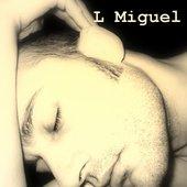 L Miguel 2007