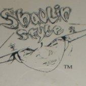 Shaolin Style