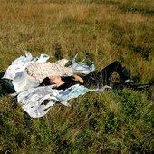 Dikolson - promo photo (2011)
