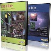 DVD box of 10 CD set