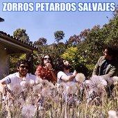 Zorros Petardos Salvajes