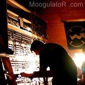 Moogulator Consequence live