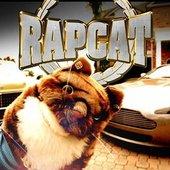 Rap Cat