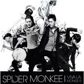 Spider Monkee