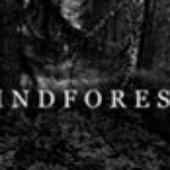 LINDFOREST