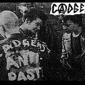 Cadgers