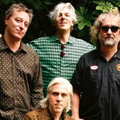 Robyn Hitchcock & the Venus 3