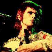 Ziggy Live