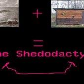 Shedodactyl