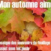 Mon automne aimé