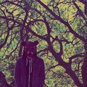 Nameless Coyote