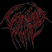 Logo C.N.