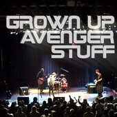 Grown Up Avenger Stuff