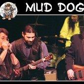 Mud Dog