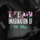 E-TRAIN - Imagination of Mr. Malo