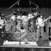 Tom Kelly Band