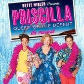 Original Broadway Cast - Priscilla Queen Of The Desert