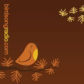 BirdsongRadio.com
