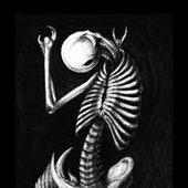 Skeletal Imposition