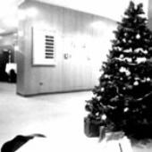 christmas...?