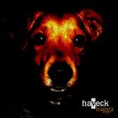 HavecK