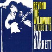 Beyond The Wildwood