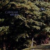 camslave