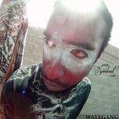 WAYF.GANG