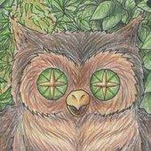 Owl! My Goddess!