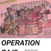 Operation Bajs
