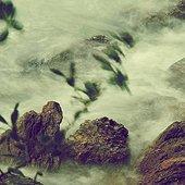 Nature's Rhythms