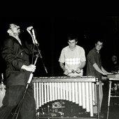 Tom Zé & members of Tortoise