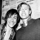 iggy pop + the thin white duke