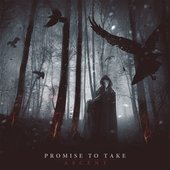 Promise To Take