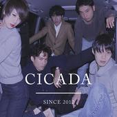 cicada_since2012