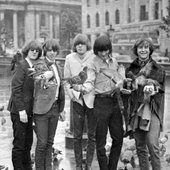The Byrds with birds