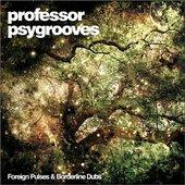 Professor Psygrooves
