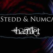 Stedd & Numca