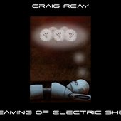 Dreaming of Electric Sheep