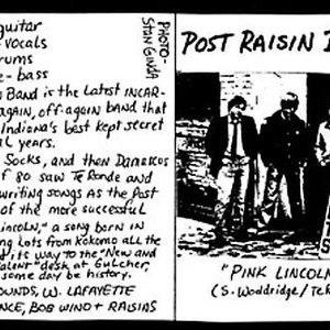 Image for 'Post Raisin Band'